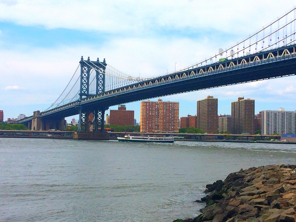 View from the Brooklyn Bridge Park.