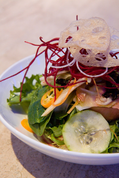 Jellyfish - Spring Salad 1.jpg