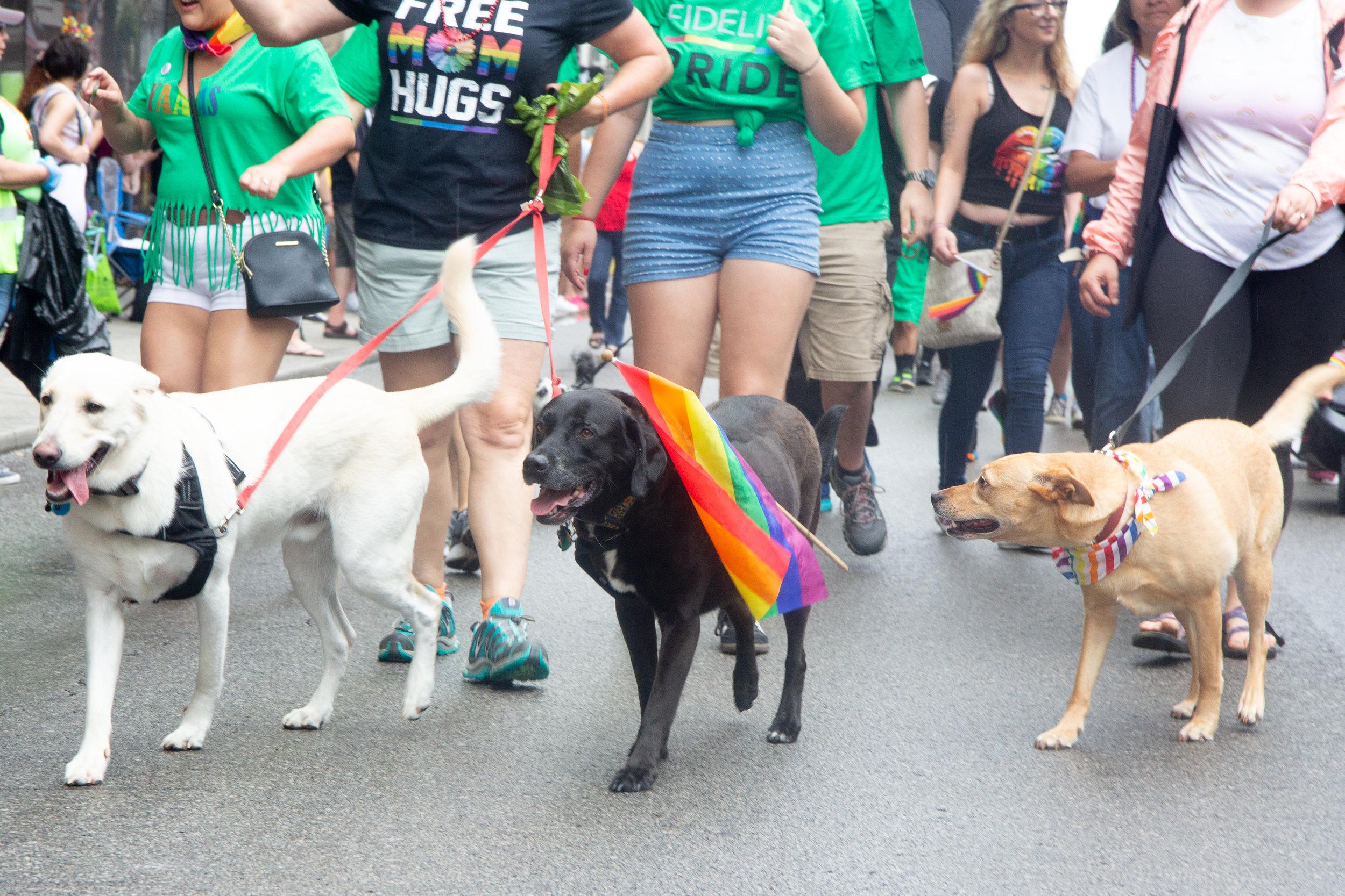 CaseyMillerPhoto - Pride - 2019 -120.jpg