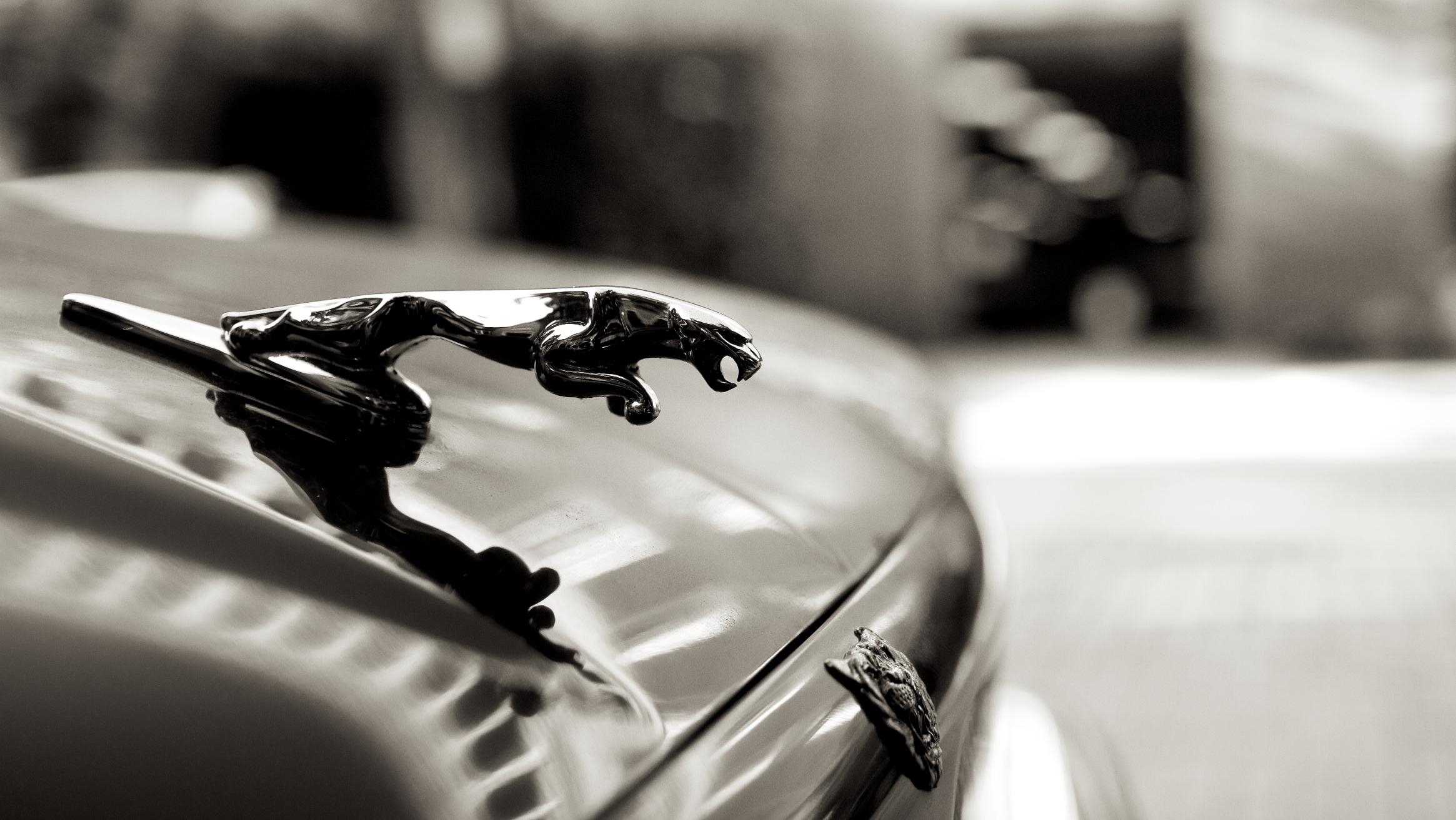 Cars36.jpg