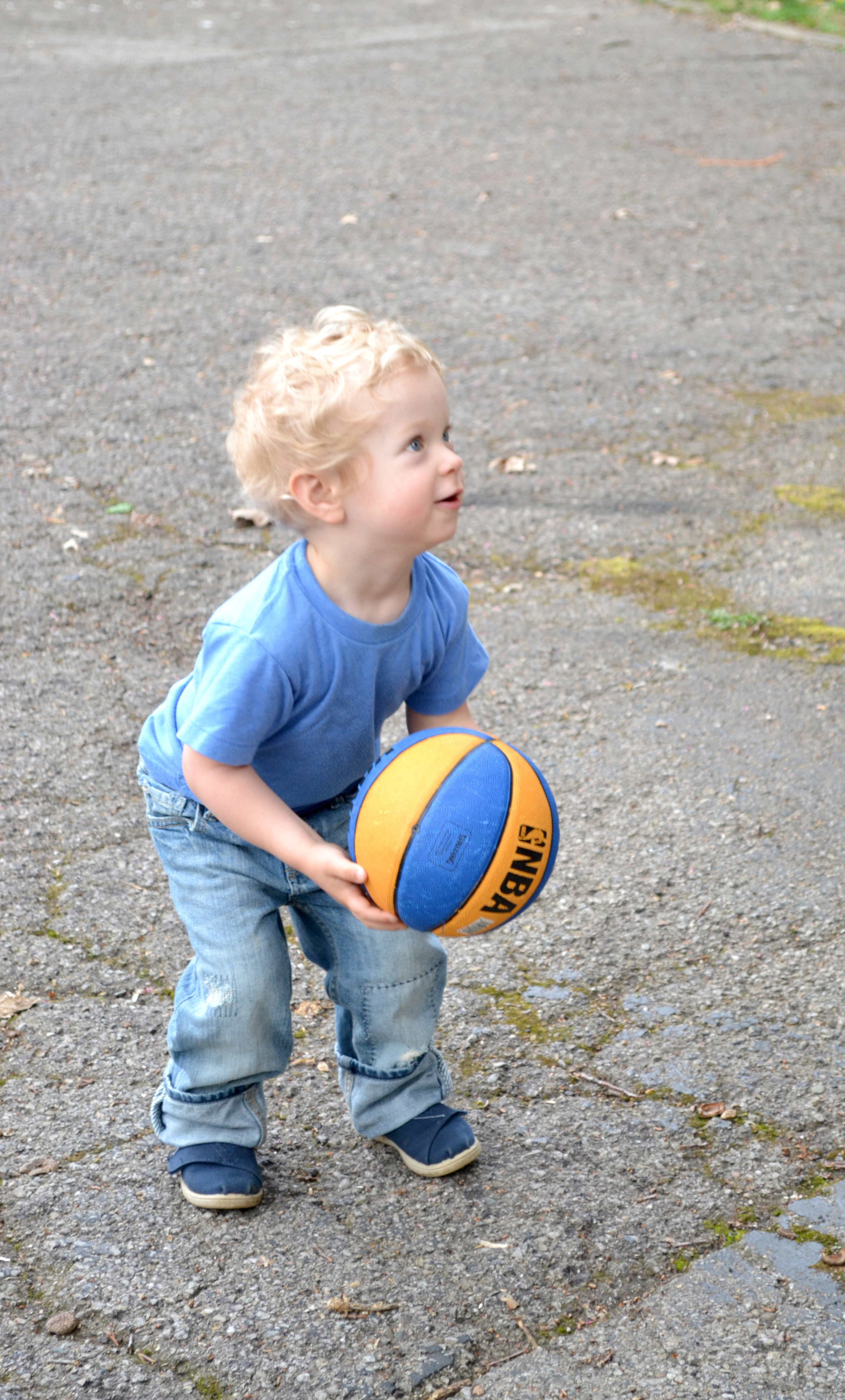 Basketball 04.jpg