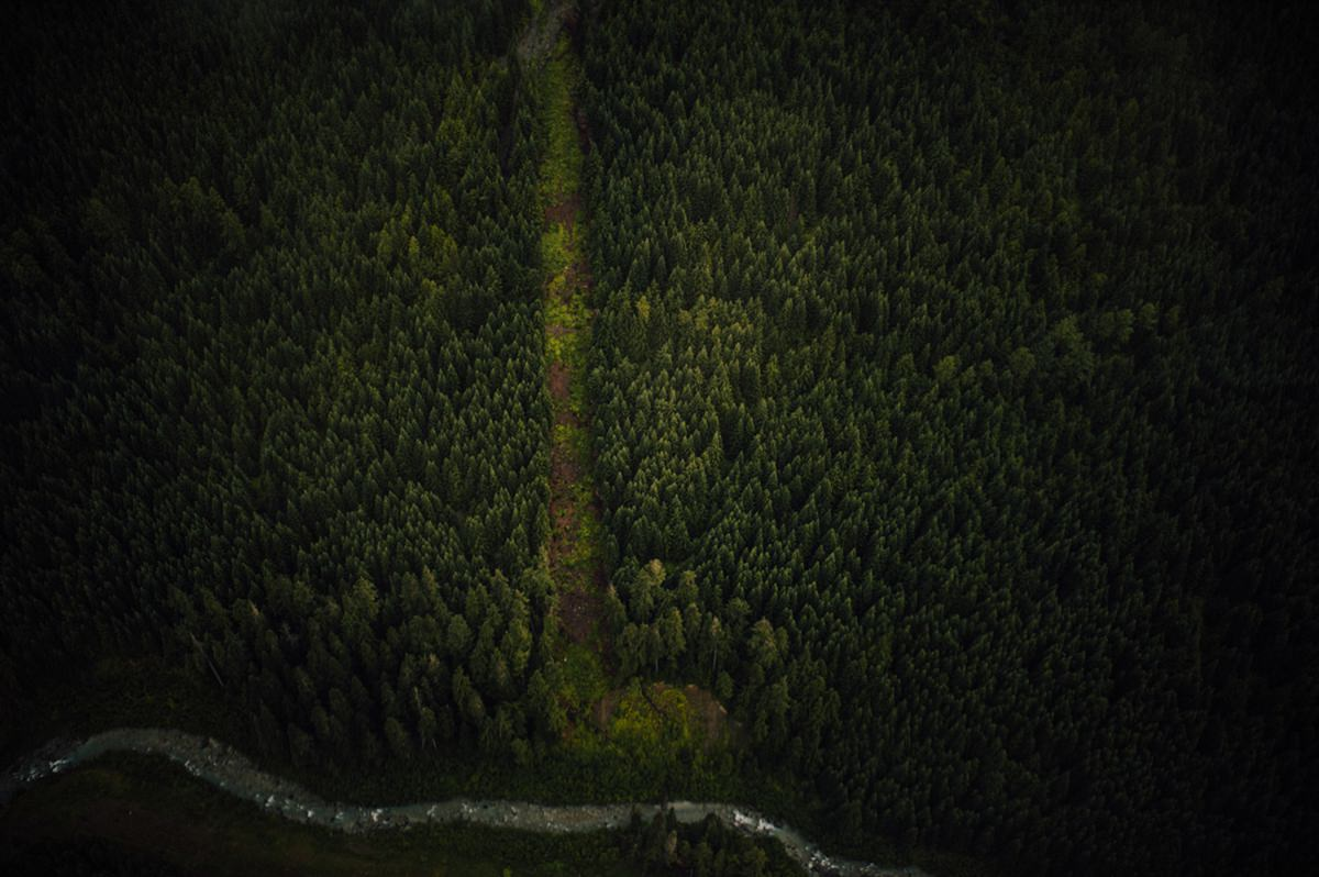 Blackcomb landscape