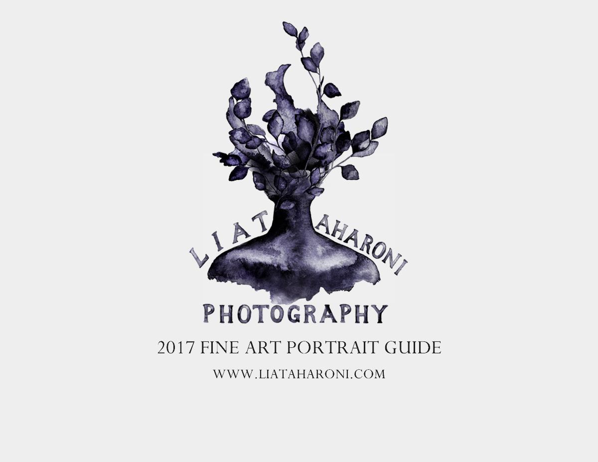 fine art guide