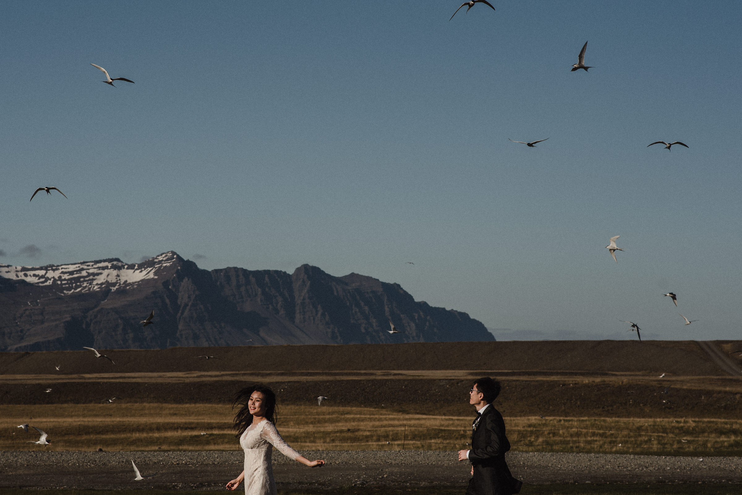 birds flying iceland wedding