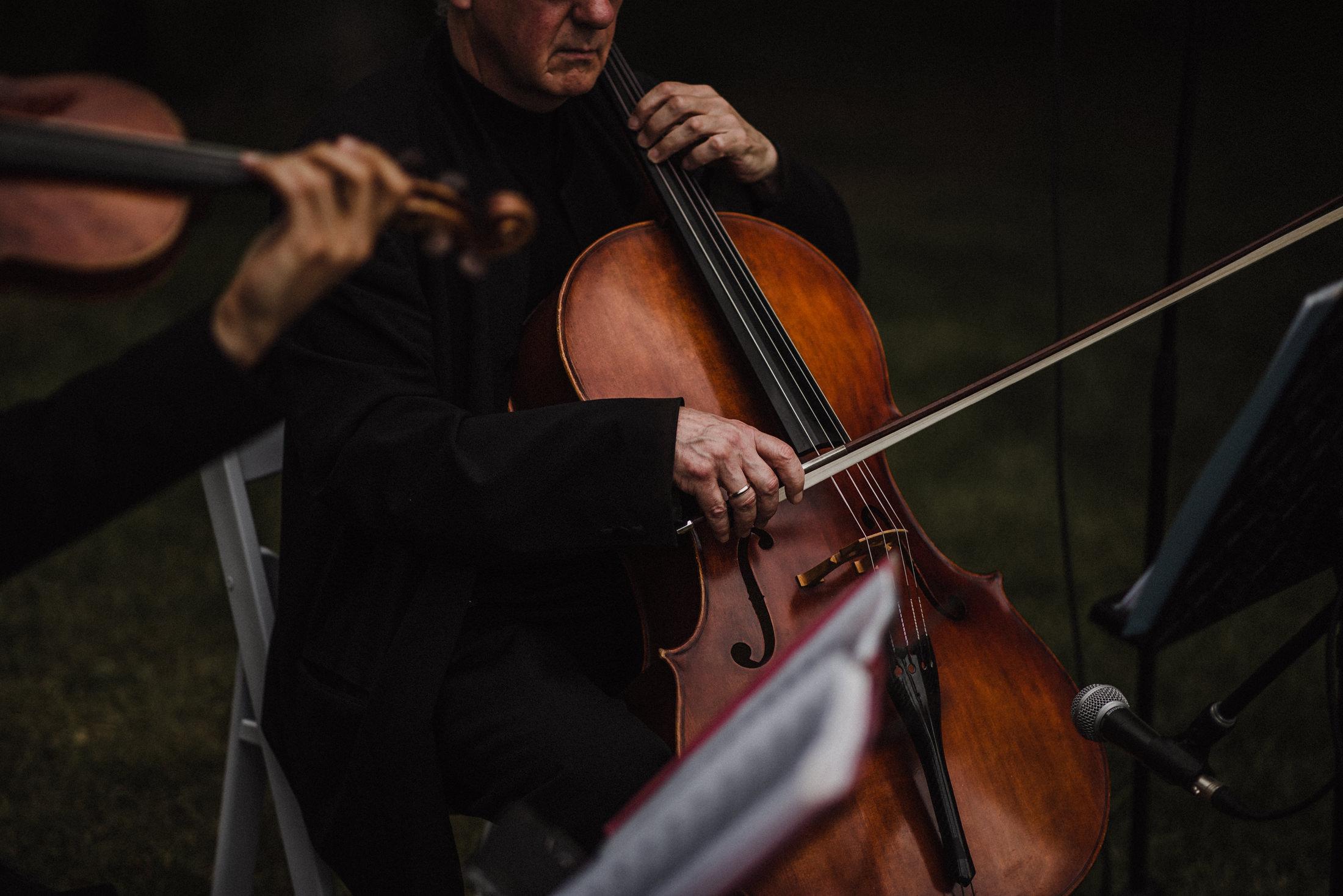 violin at cambium farms wedding