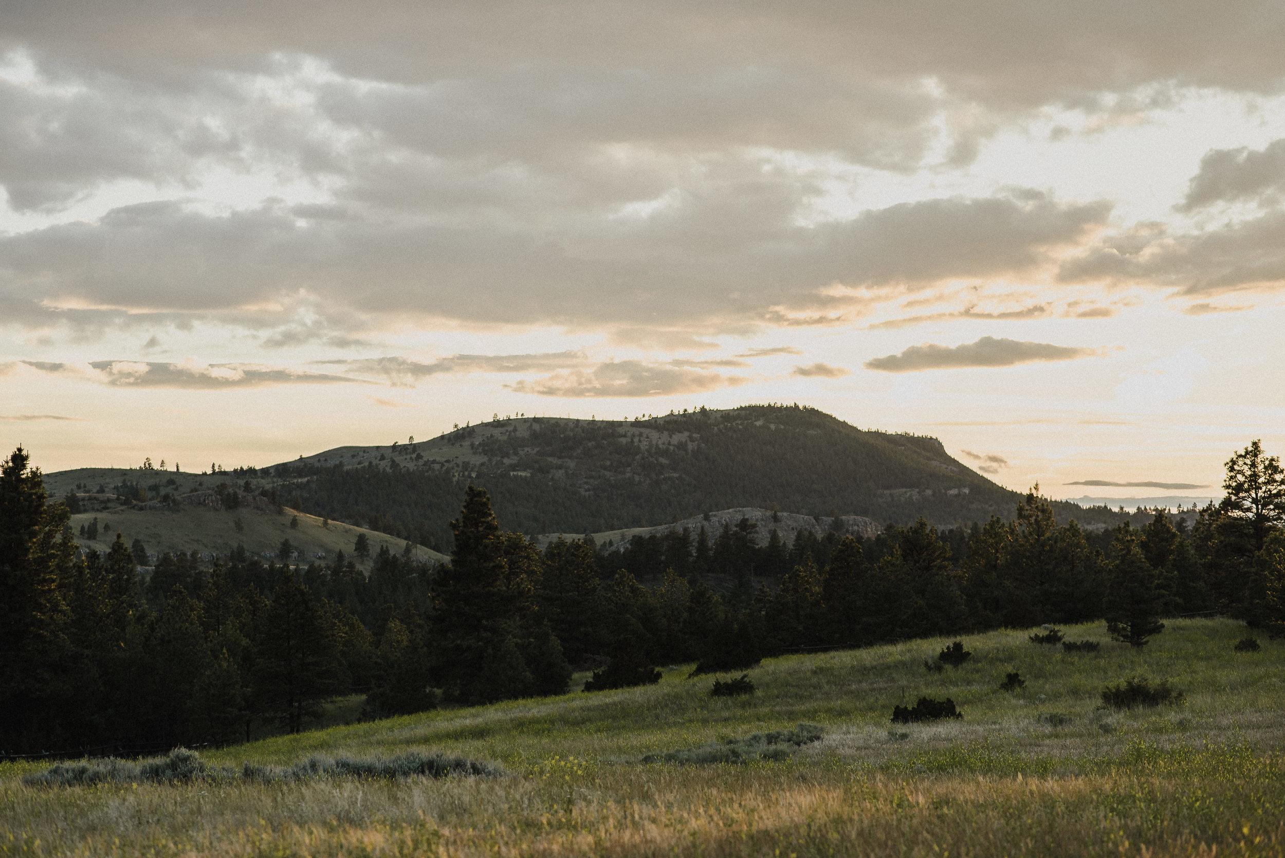 golden hour at summer star ranch