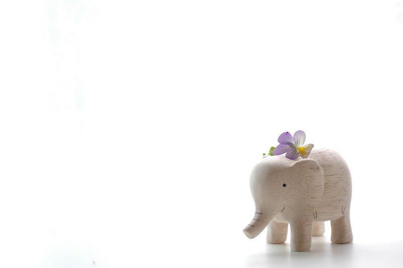 product photo shoot, elephant, miniature, porcelain