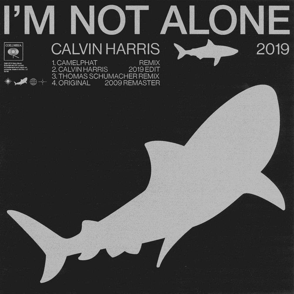 I'm Not Alone.jpg