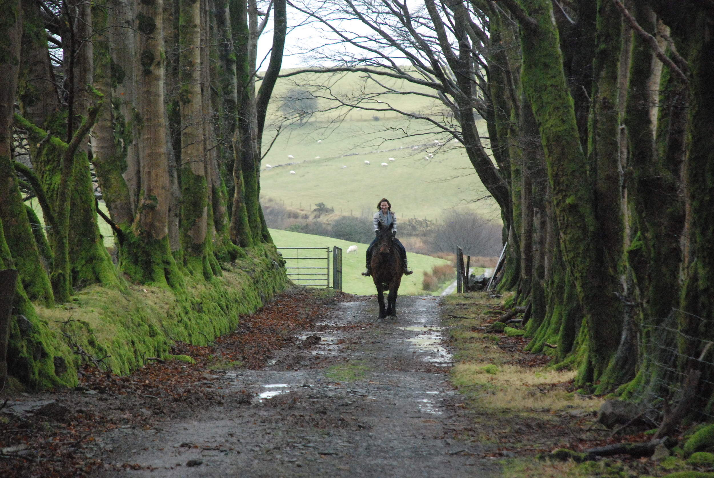I love love love horseriding. It'd be so fun to be in a Western.