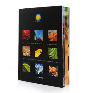 Stri - Biennial Report 2003 - 2005