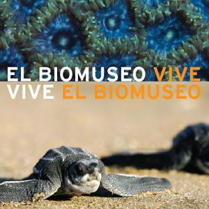 vive_bio_1.jpg