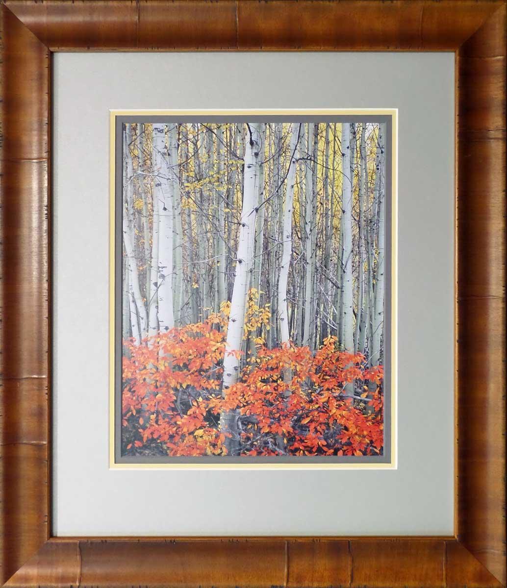 """Mike Putnam """"Aspen Grove"""". Custom Framed by High Desert Frameworks!, Bend Oregon."""