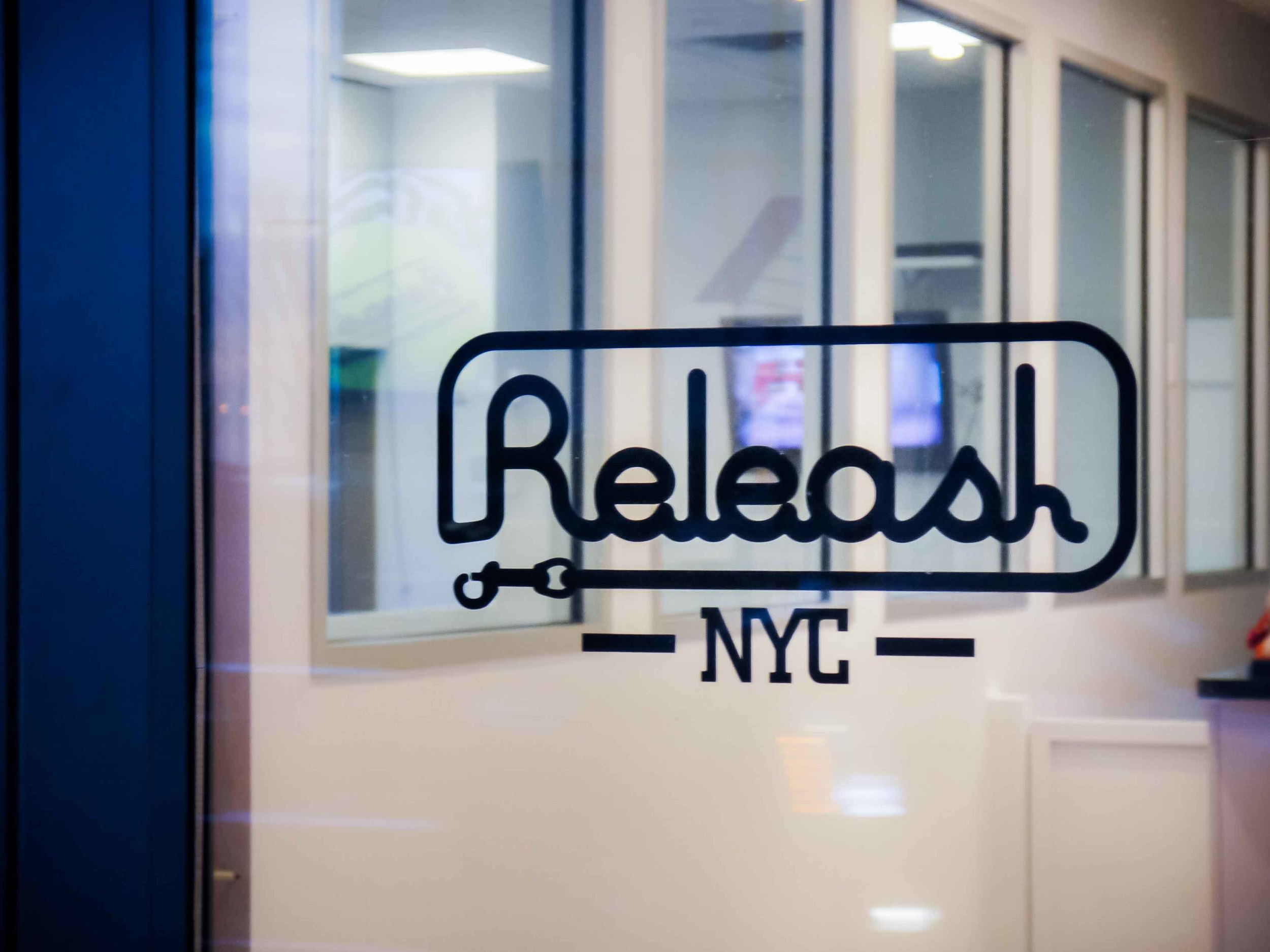 Releash (6).jpg