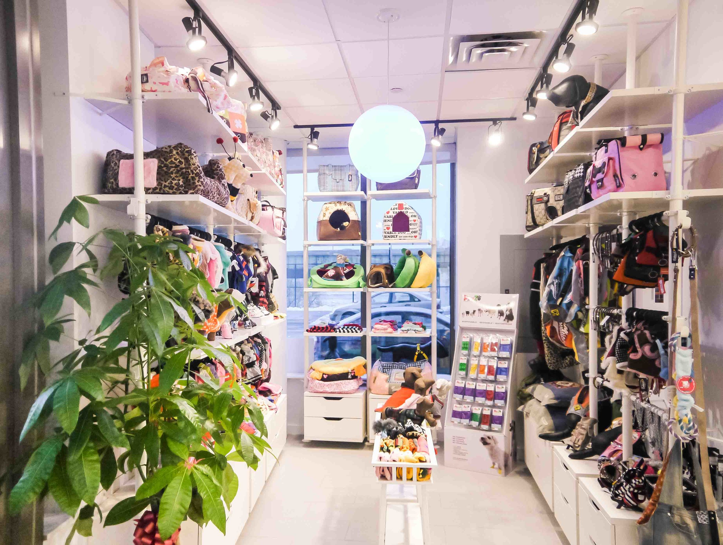 Releash NYC, commercial retail and pet store    New York, New York