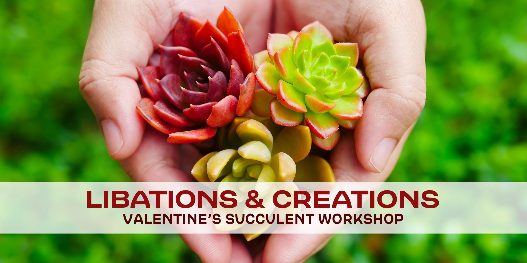 valentine-succuelent-workshop