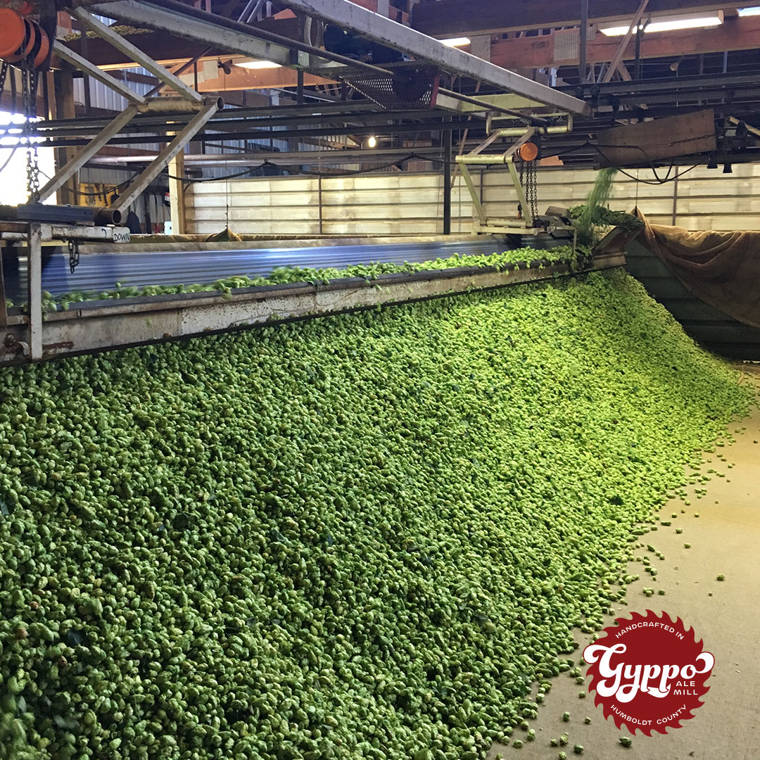 fresh-hops-last-call.jpg