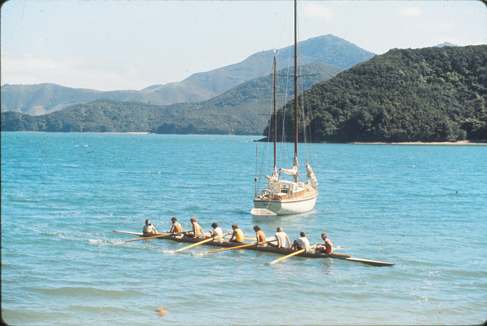 rowing boats  sailing boats.jpg