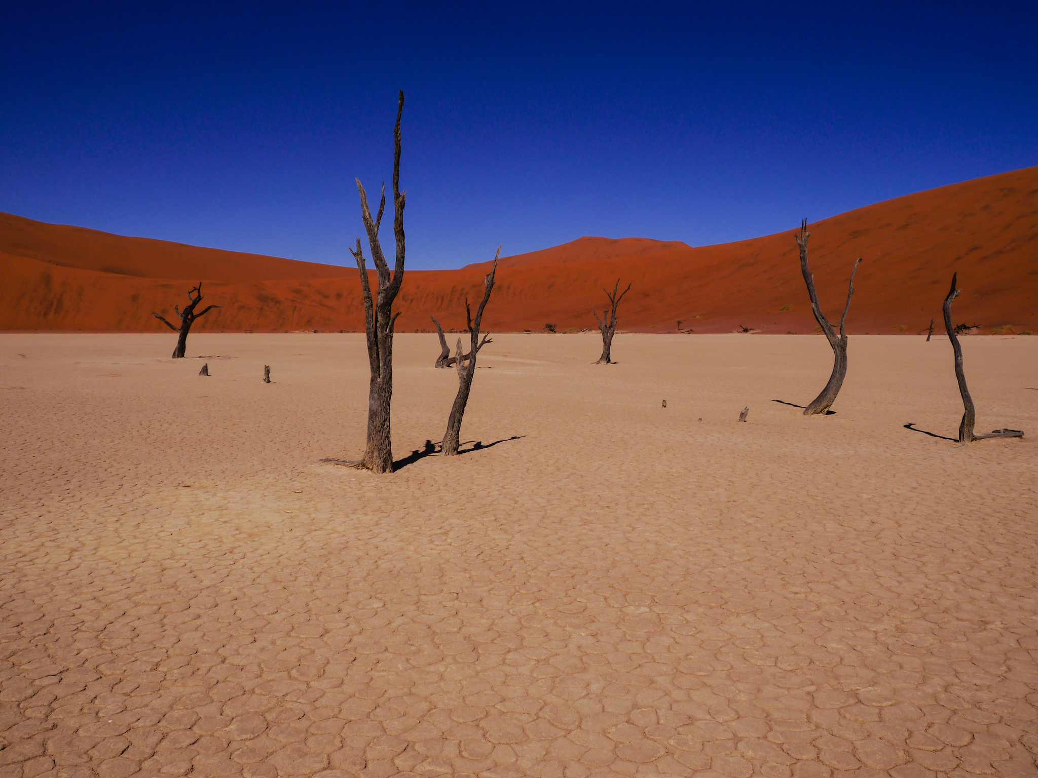 Namibia '14 -