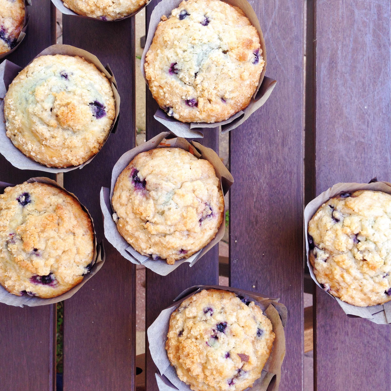 wild_blueberry_muffin_01.JPG