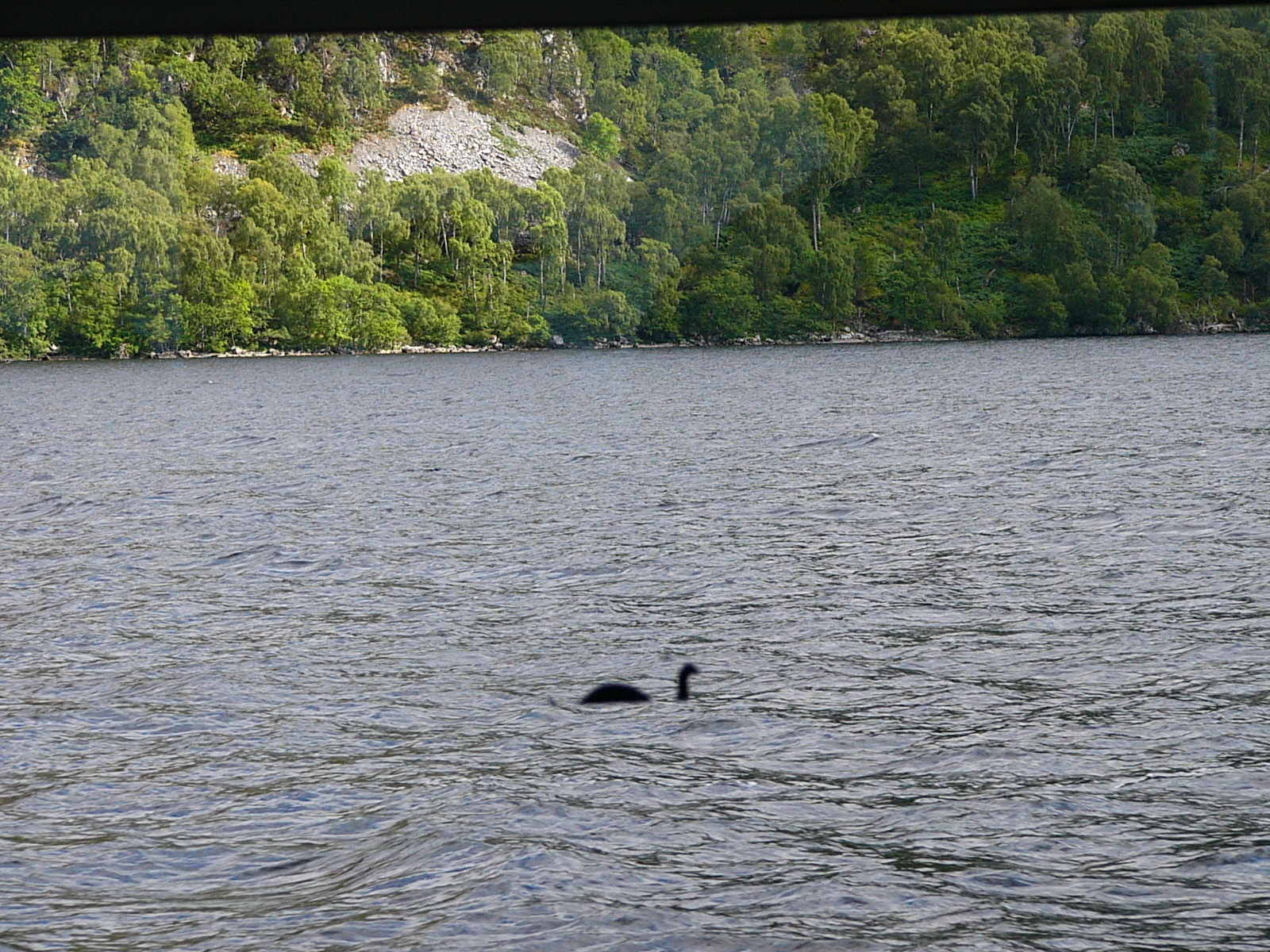 Searching for the Loch Ness Monster! Oh No! . . Wait a minute . . . I think we found . . .