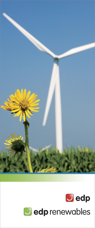 """EDP Renewable Energy 33"""" x 79.25"""" Bannerstand"""
