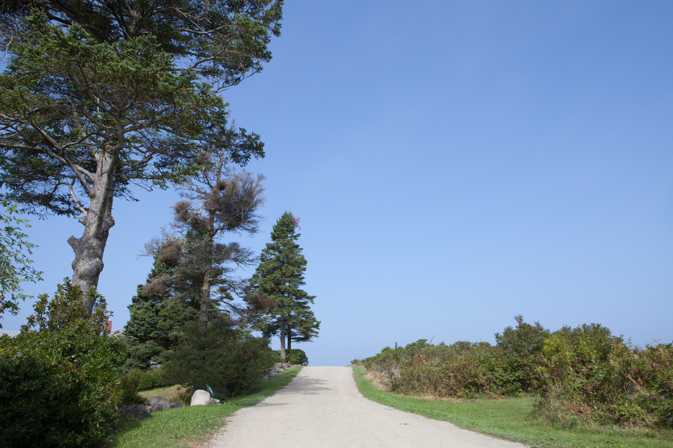 Ashley-Jim-Nature Walk-8386.jpg