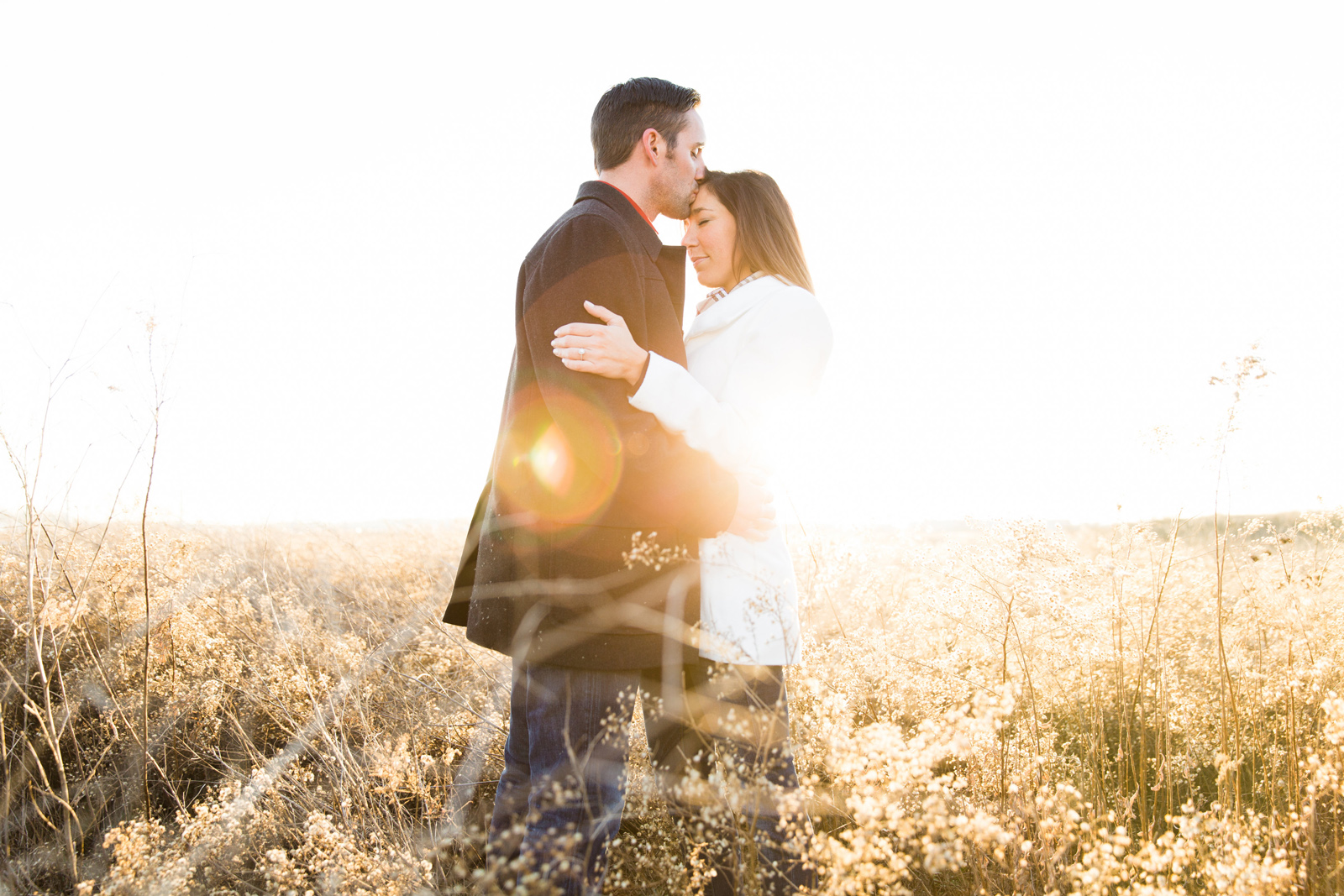 Oldani Photography-St Charles-Family Session-engagement-New Town_20141228_17045500.jpg
