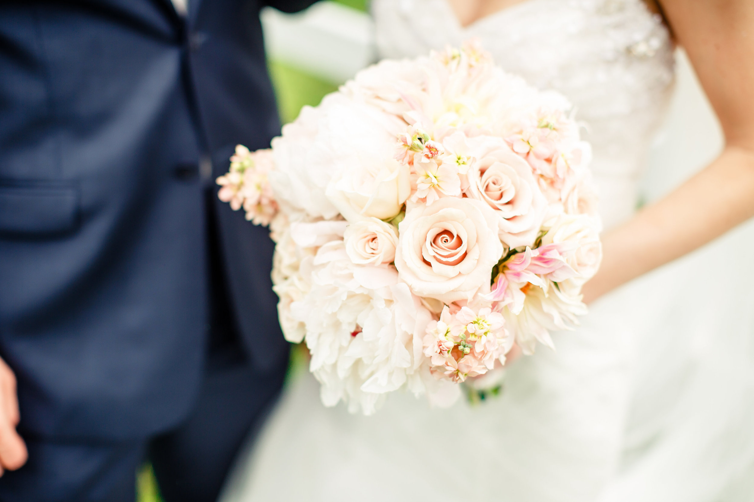 Grant's Farm St. Louis Wedding Photographer Oldani Photography 2.jpg