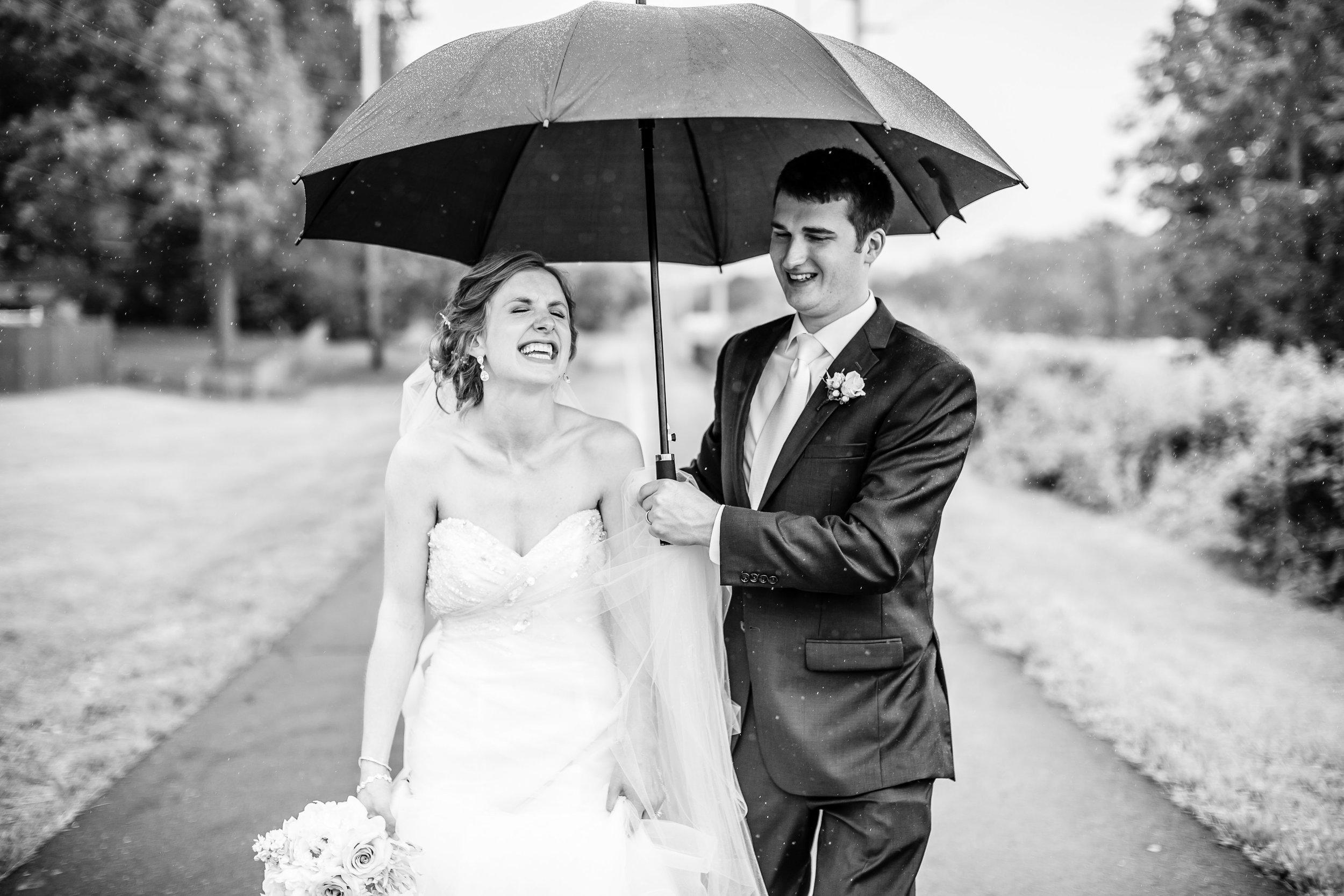 Grant's Farm St. Louis Wedding Photographer Oldani Photography 1.jpg