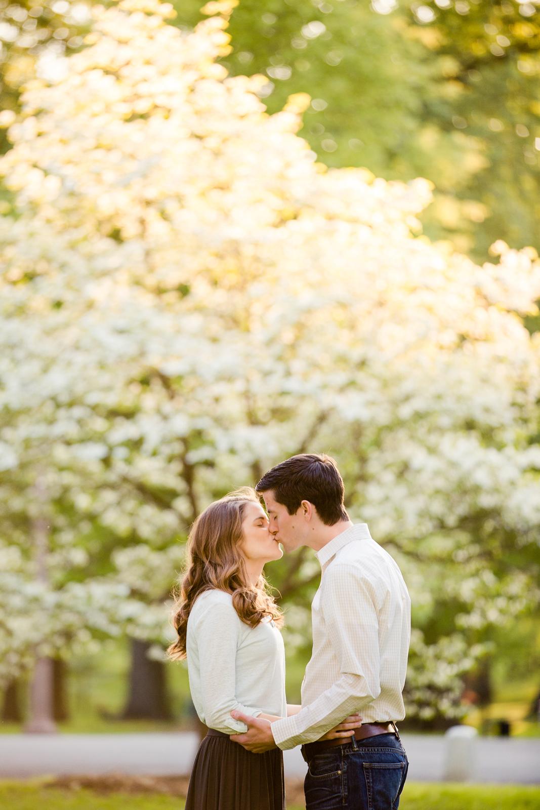 Tower Grove Engagement Session St Louis Wedding Photographer Oldani Photography 3.jpg