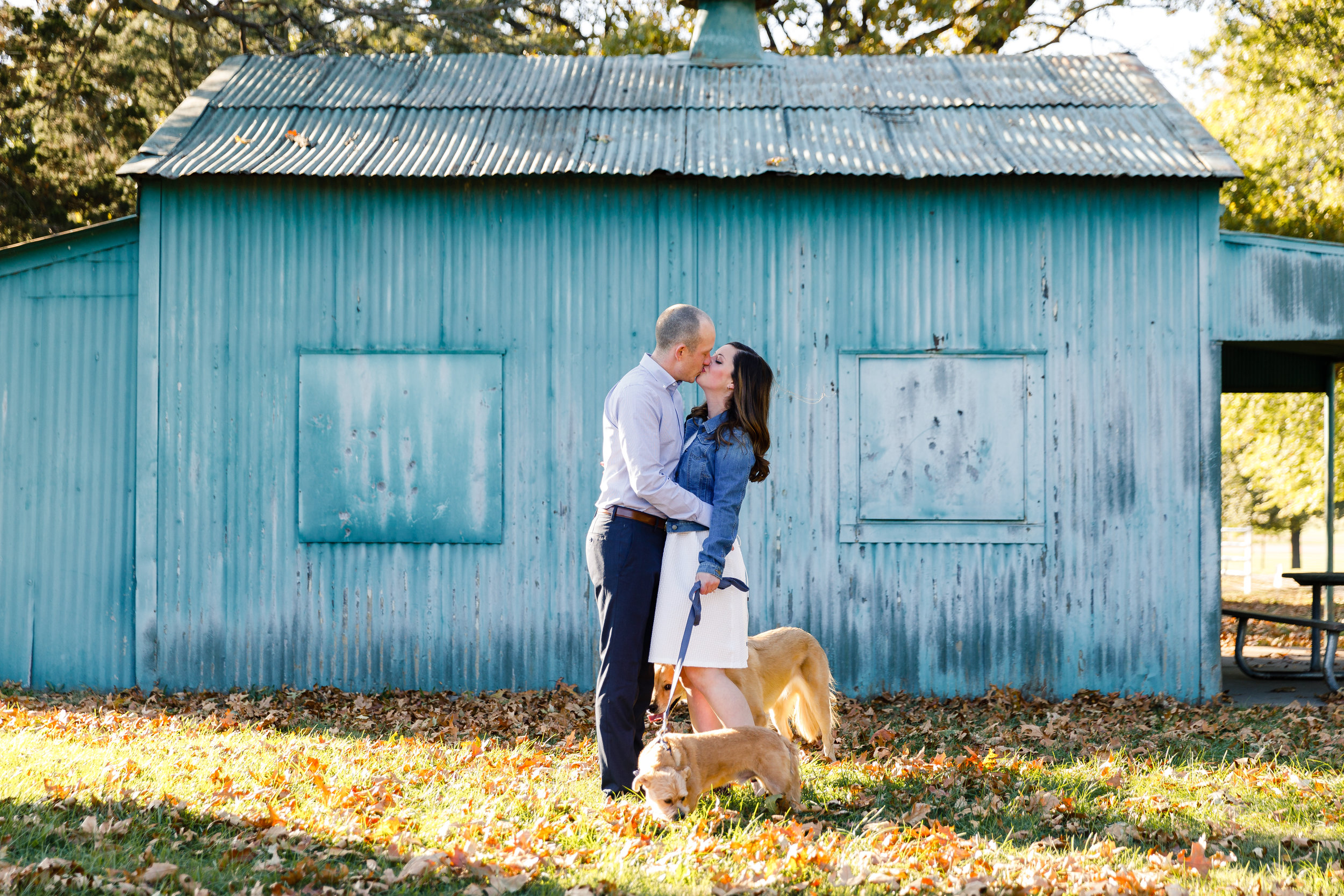 Forest Park Engagement Photos by St Louis Wedding Photographers and Videographers Oldani Photography 0