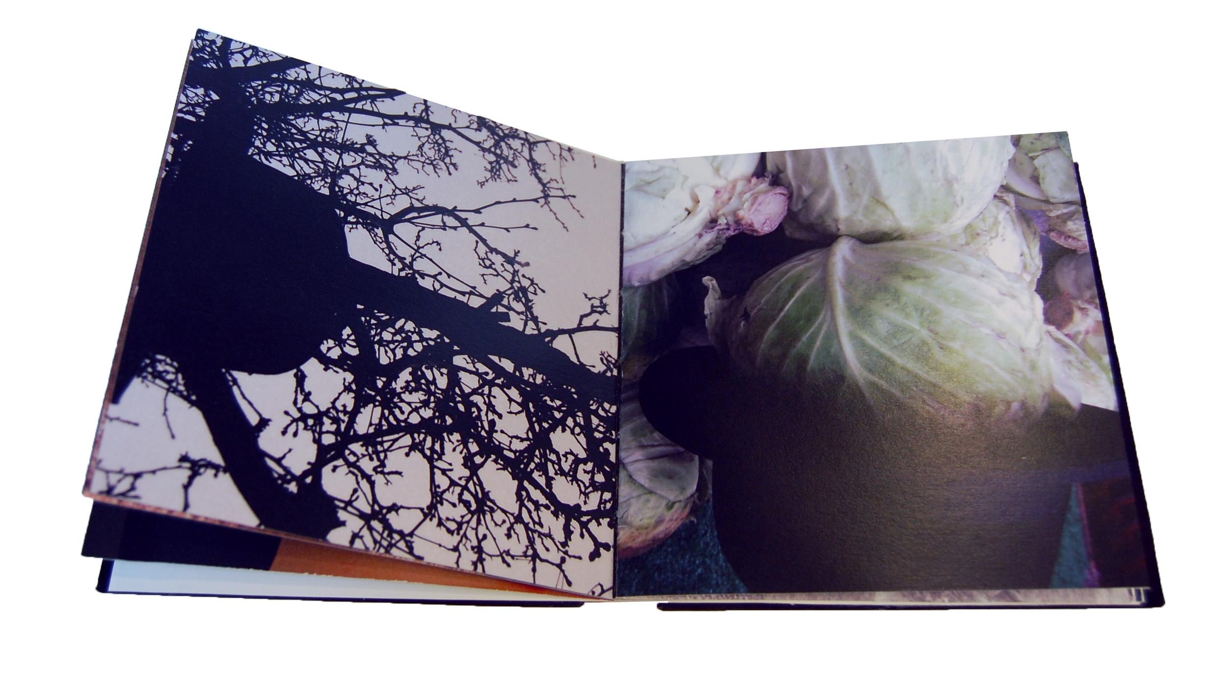 Owens Hat Book2.jpg