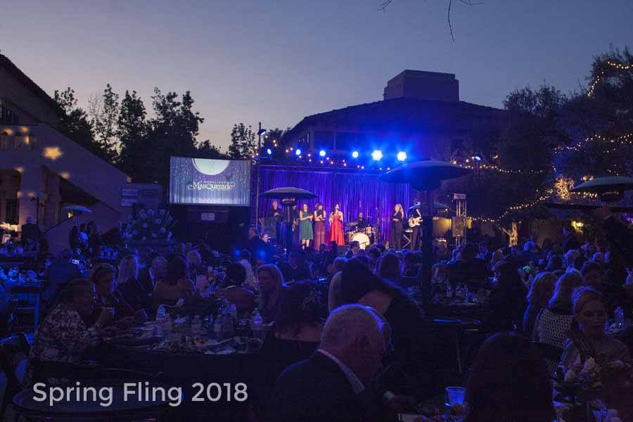2018 HWAC Spring Fling Live Auction