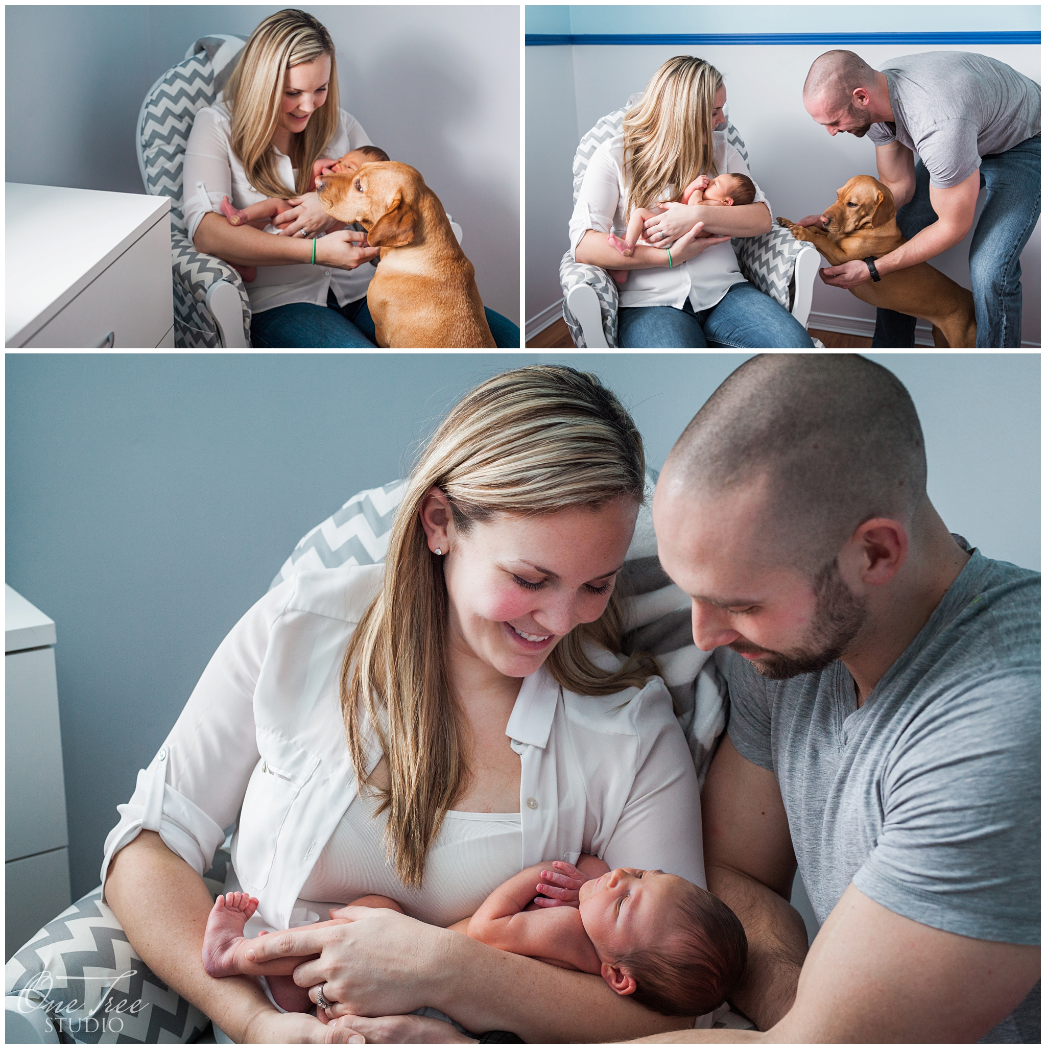 Baby Ethan | Newborn Photographer | Markham and GTA