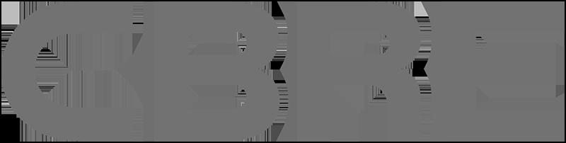 CBRE grey logo.png