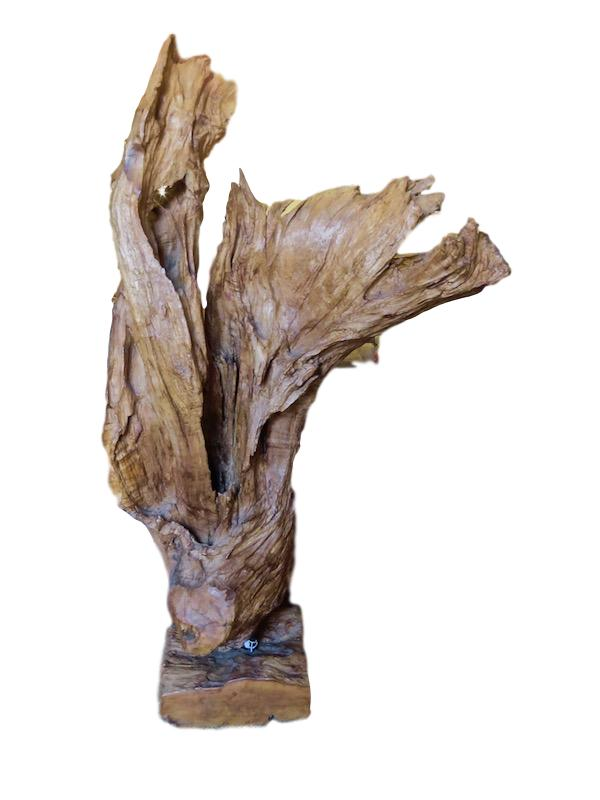Teak Root on Stand   12x29x52h  QI027