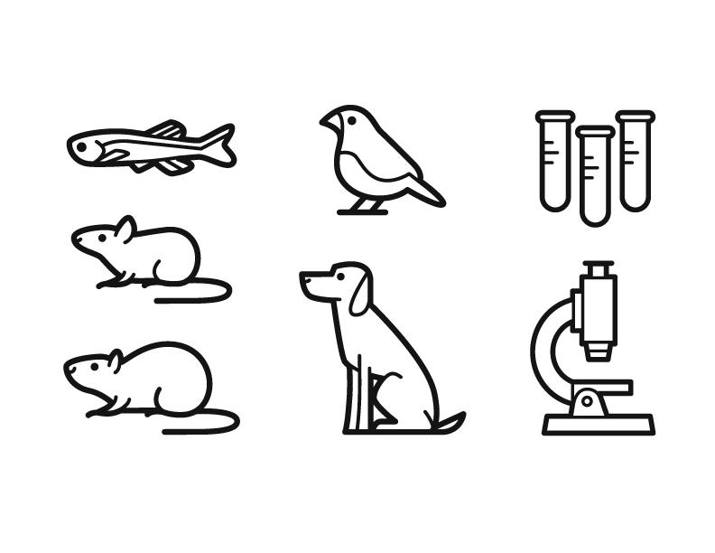 Icons | Humane Society