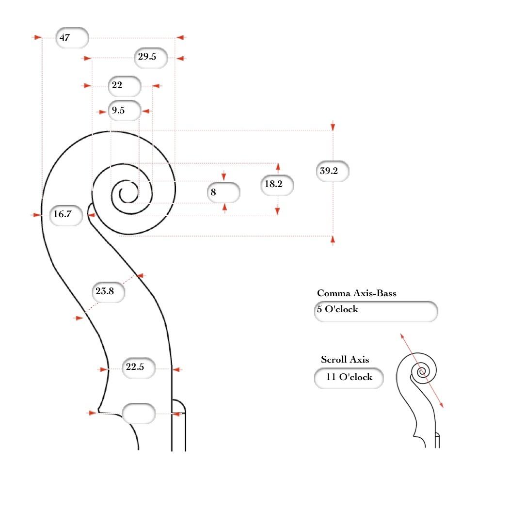 JS 40-Scroll-Bass.jpg