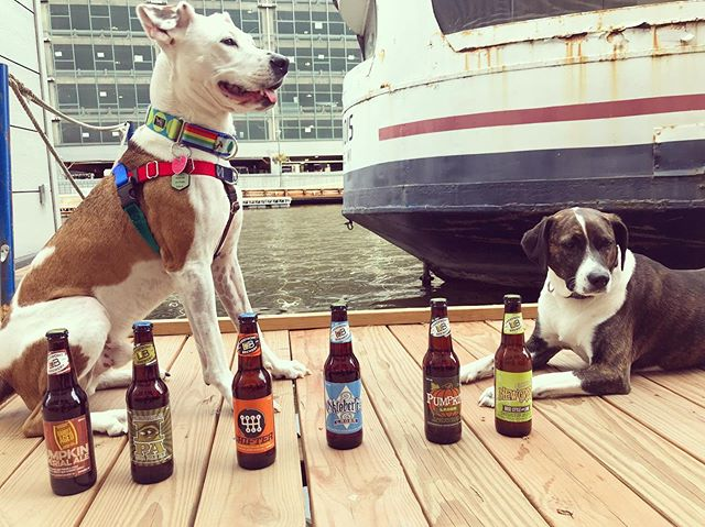 Leon and Mabel getting a sneak peak at a couple raffle baskets for our @savethestraysmilw #caninecruise Tuesday. Tasty brews are just the start!  Stay tuned for our big reveal tomorrow. Get your tickets now at mkeboat.com. Thanks to @lakefrontbrewery for their support and generosity. . . . . . #savethestrays #adoptrescuefoster #boatdog #rescuedog #dockdog #milwaukee #mke #milwaukeeriver #downtownmilwaukee #milwaukeeriverwalk #dogfriendly #dogfriendlymilwaukee #beer #lakefrontbrewery #donate #lendahelpingpaw