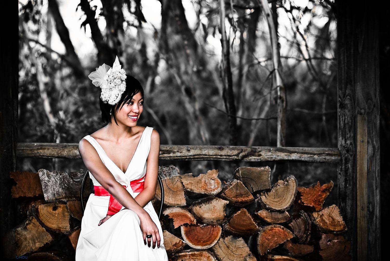 CPX2009M01D25-Z01078-T1931_S48---Xi & Joris' Wedding.jpg