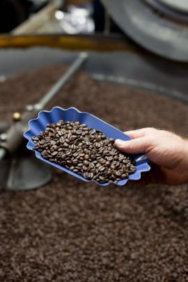 Fonte coffee, Seattle WA
