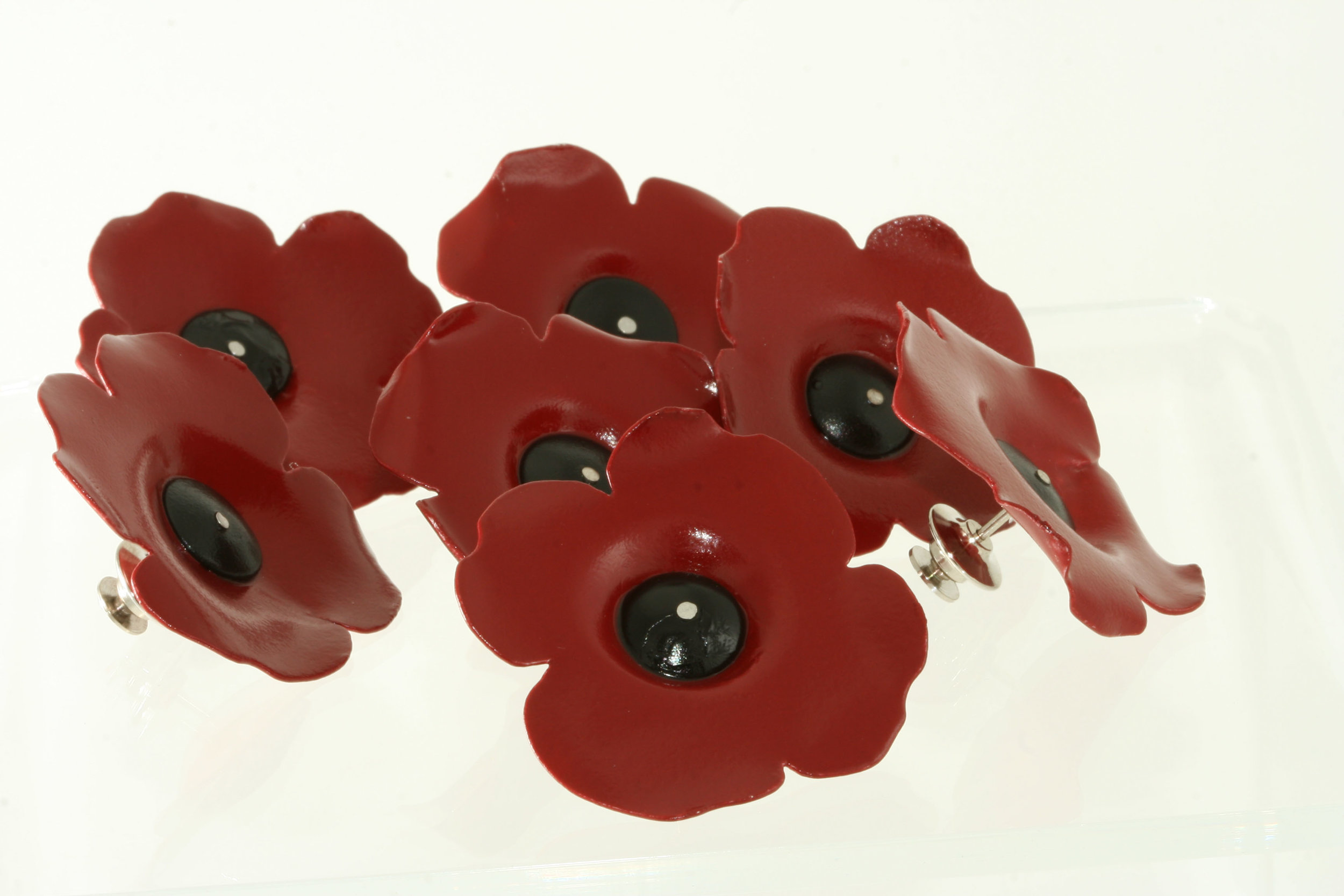 group of poppies.jpg