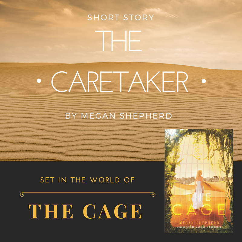 Caretakergraphic.jpg