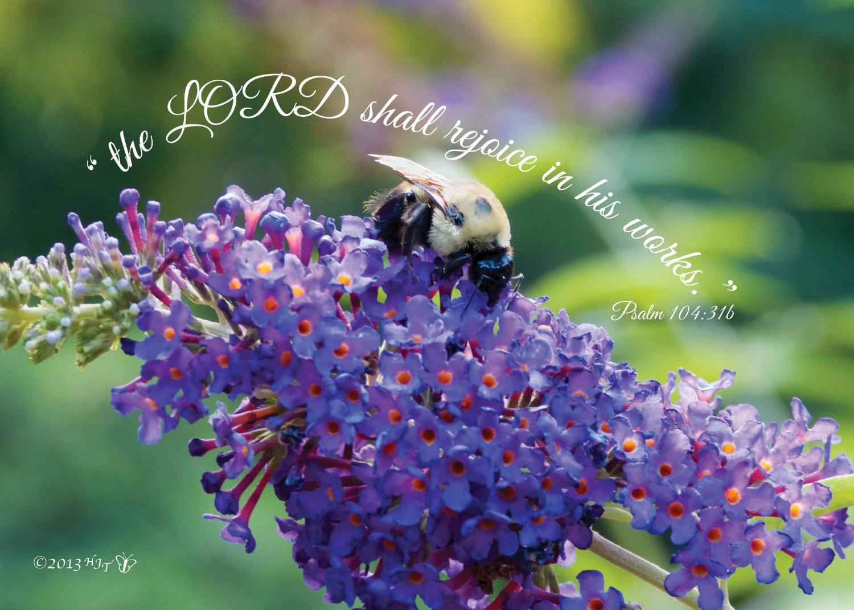 HG108 5x7 Purple Butterfly Bush & BB.jpg