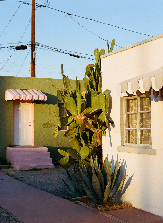 Golden Hour Buildings and Cactus off E Van Buren St 001_web.jpg