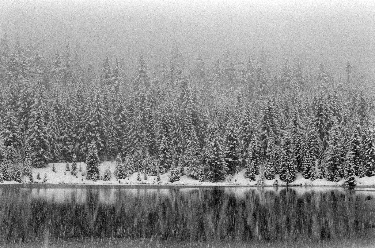 Snow Covered Trees in the Snow_Gold Creek Pond Reflection_Icy Pond 02_web.jpg