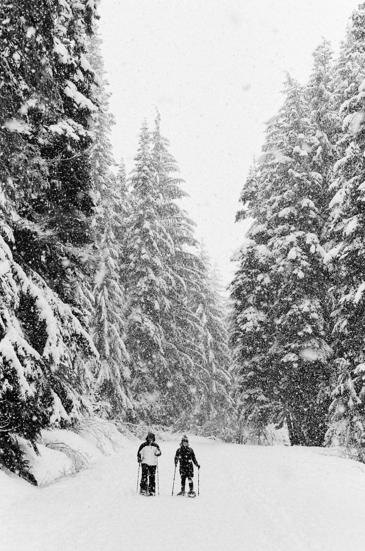 Melanie and Alli Snowshoeing_web.jpg