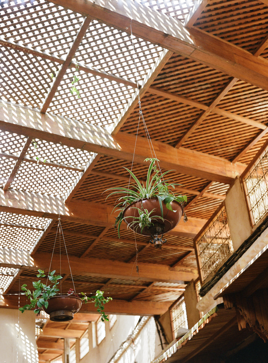 suspended potted plants inside fez medina_web.jpg