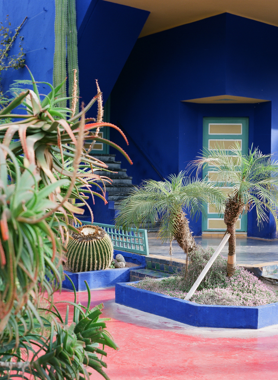 Jardin Majorelle Blue Walls and Plants_web.jpg