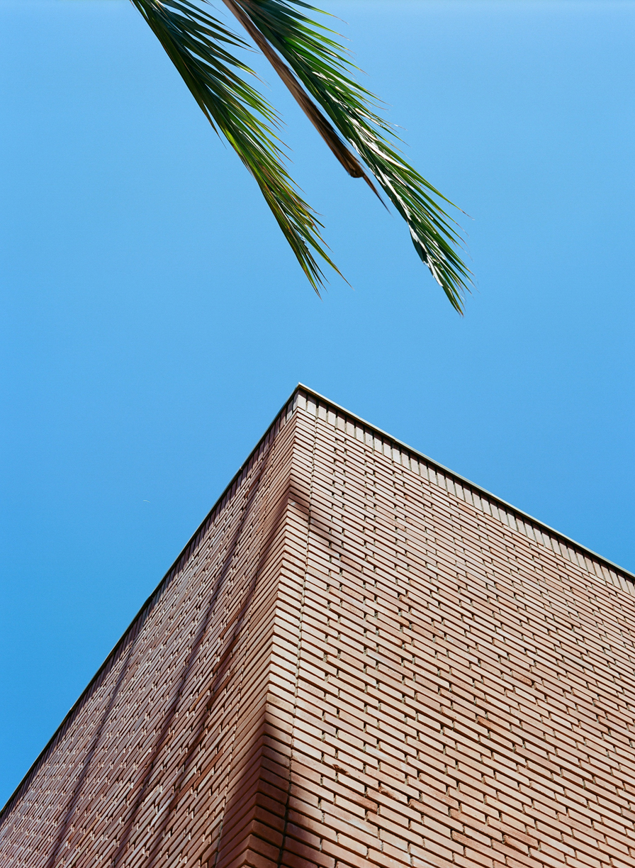 Corner of Top of YSL Museum Building_Brick and Palm_web.jpg